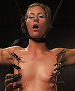 Cuffed, chained, vibed and pegged