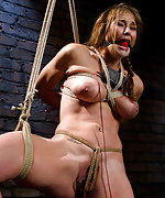 Rope bondage, electro-sex and the cattle prod
