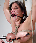 Huge tits tied up and abused