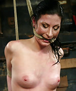 Suspension, pegs, multiple forced orgasms